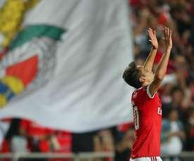 Jonas voltou a marcar, agora na vitória por 3-1 sobre o Vitória de Guimarães. Twitter