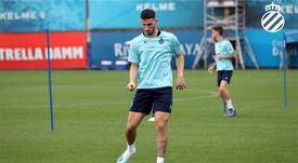 Calleri se dejó querer por el fútbol argentino. RCDEspanyol