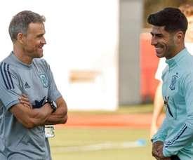 Luis Enrique gave a surprising response on Asensio. EFE