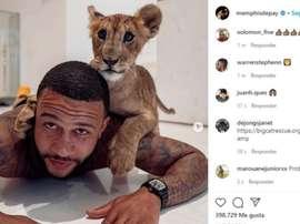 Depay apresentou o seu pet: um filhote de leão. Instagram/memphisdepay