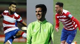 Varios jugadores del Granada salieron de la cantera del Córdoba. LaLiga/GranadaCF