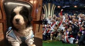 Bernabéu, el perro de Martínez Quarta que 'odia' Boca. Instagram/Martínezquarta/EFE