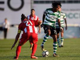 Aves e Sporting encaram-se na final da Taça. Twitter