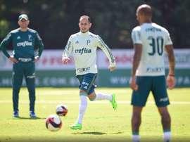 Palmeiras faz treino de reconhecimento no Pacaembu. FernandoDantas/GazetaPress