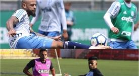 Palmeiras e Ceará se enfrentam pela 30ª rodada do Campeonato Brasileiro. Collage/Twitter