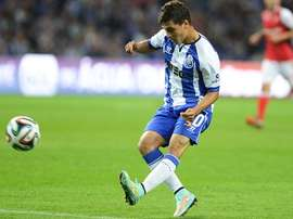 Meia 'azul e branco' tem mercado. FC Porto
