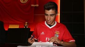 Rodrigo Conçeicao a été appelé pour s'entraîner avec l'équipe première. SLBenfica