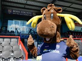 Ross County FC are feeling stupid after accidentally deleting their club's official website. RossShireJournal