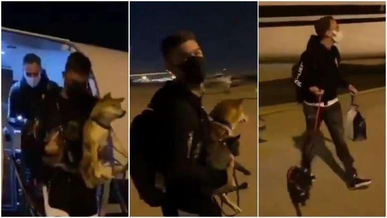 Vietto aterrizó acompañado de tres perros. Twitter/ITrklzx