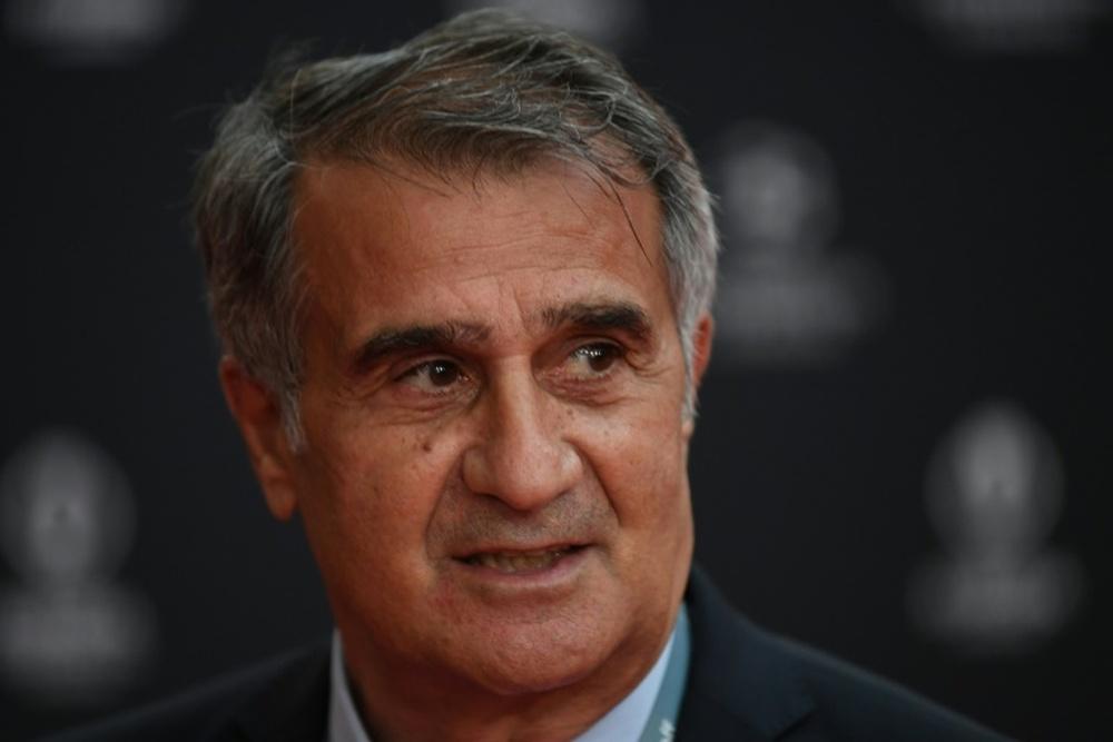 Le sélectionneur turc renvoyé après la déroute contre les Pays-Bas. afp