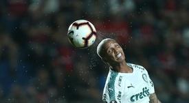 ¿Quiénes son los favoritos a ganar el Brasileirao 2019? EFE