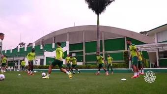 Palmeiras segue em preparação.